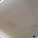 店舗 天井の部分張替え工事